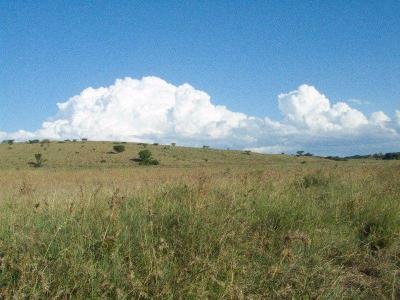 farm_for_sale_ladysmith_kwazulu_natal-1518416847-960-e