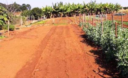 small_farm_with_bushveld_view_in_nelspru-1519299678-35-e