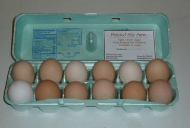 Farm Fresh Eggs – At an Eggcellent Price!!