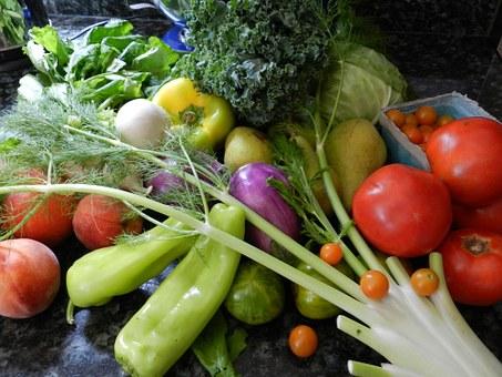 Easy Backyard Veggie Garden
