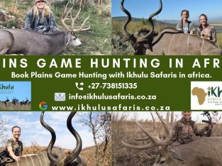 Plains Game Hunting in Africa