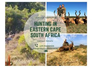 Hunting in Eastern Cape South Africa