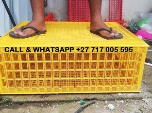 Live Chicken Transport Crates For Sale