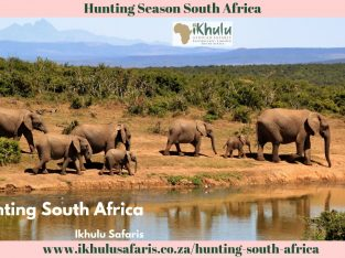 Hunting Season South Africa