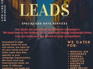 Leads Data Debt Review and Call Centres