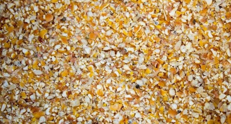 Grind Yellow Maize for sale whatsapp +27631521991
