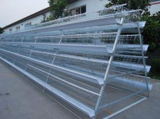 Layer cages for chickens