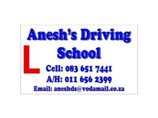 Aneshs Driving School-Automatic and Manual lessons