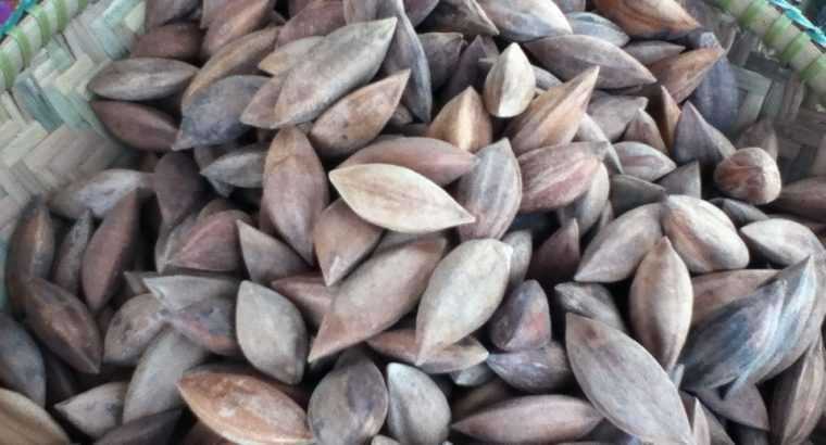 Pili Nuts For Sale