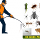Get Fumigation Treatment Services in Sandton